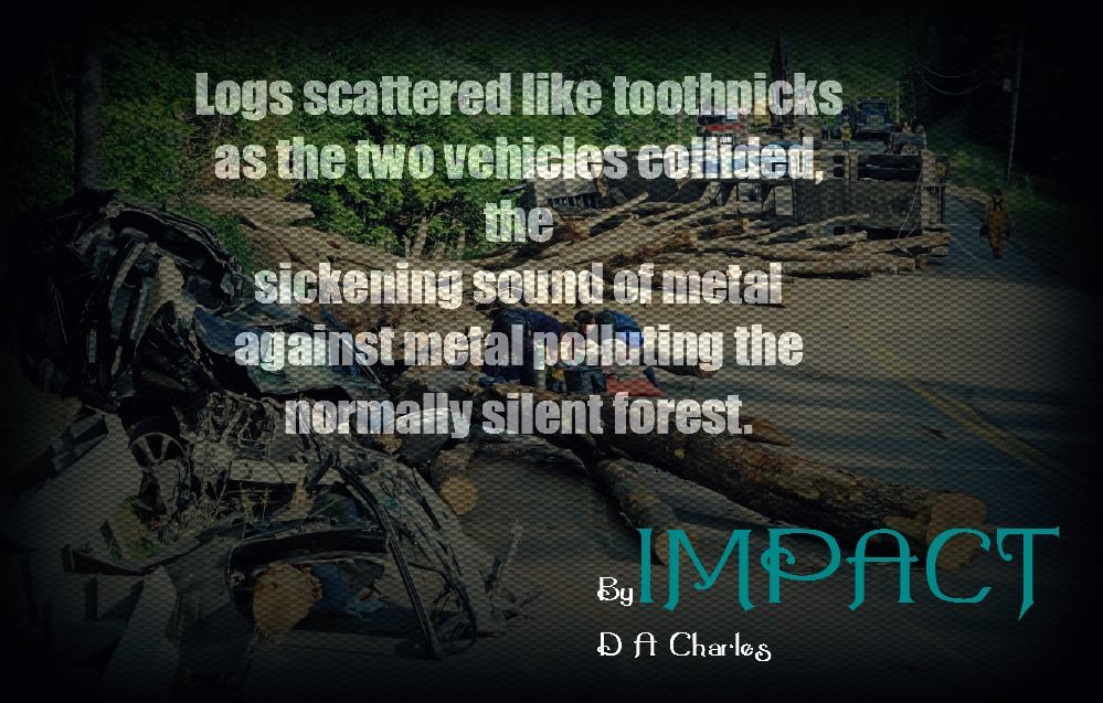 Logs scattered like toothpicks as the two vehicles collided, the sickening sound of metal against metal polluting the normally silent forest.